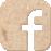 facebook icoon karton